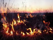 На территории области объявлен пожарный сезон