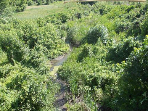 В Шахтах планируют почистить реки и пруды