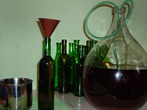 Шахты.SU приглашает на конкурс-дегустацию домашних вин
