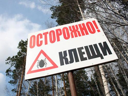 54 жителя Ростовской области заболели крымской геморрагической лихорадкой