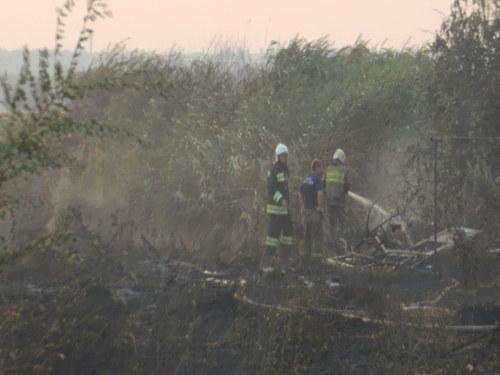Пожар на площади в несколько сотен гектарров произошел в районе пороховых складов