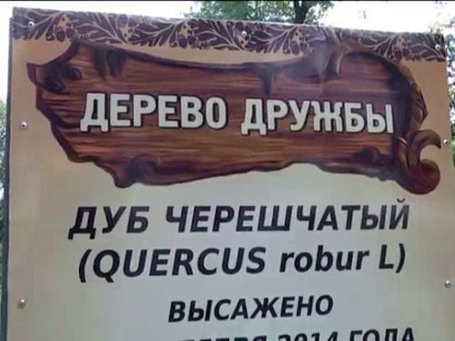 Символом дружбы народов в Шахтах стал дуб черешчатый