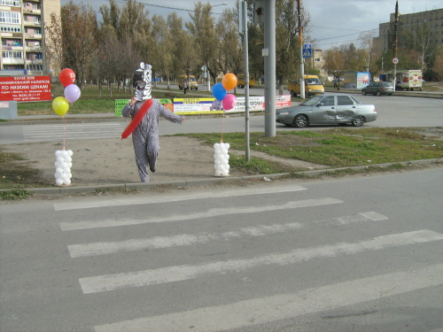 """В Шахтах отметили день рождения """"зебры"""""""
