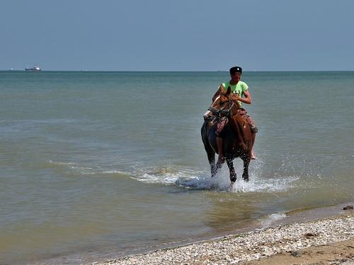 Казаки-участники конного перехода переправились через Керченский пролив