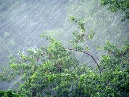 После дождей с грозами ожидается похолодание
