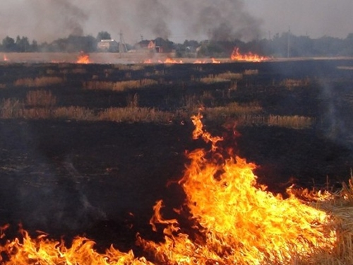 В Шахтах установлен особый противопожарный режим