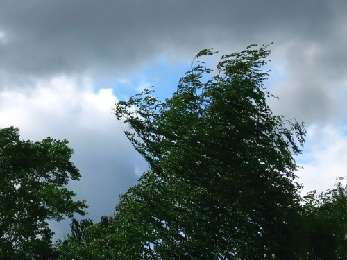 С юго-запада на Шахты надвигается циклон, на юго-востоке - 40-градусная жара