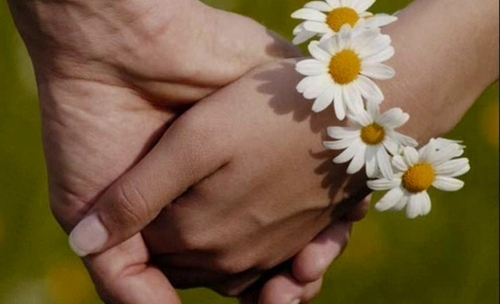 Завтра в Александровском парке будут чествовать шахтинские семьи