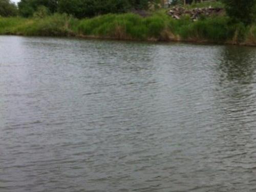 В пруду поселка 20 лет РККА утонул мужчина