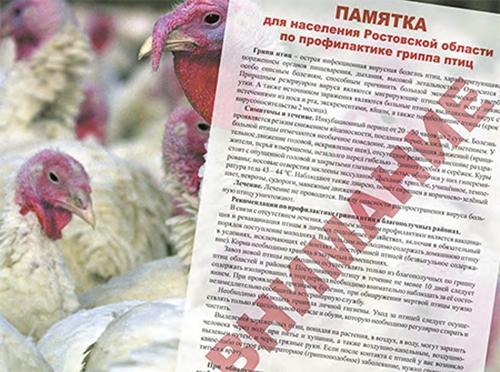 В Ростовской области снят карантин по гриппу птиц