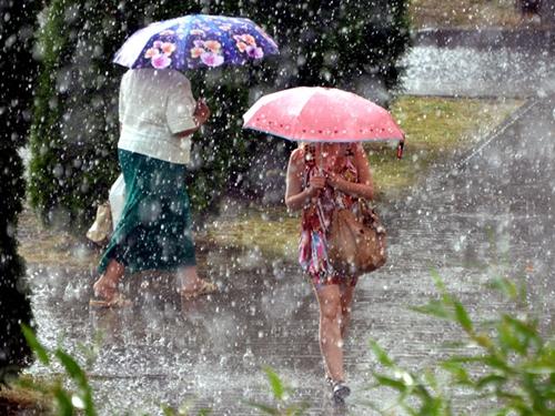 Синоптики обещают три дождливых дня