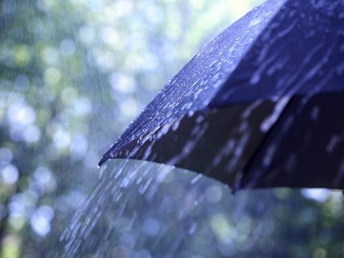 Завтра не забудьте зонтик