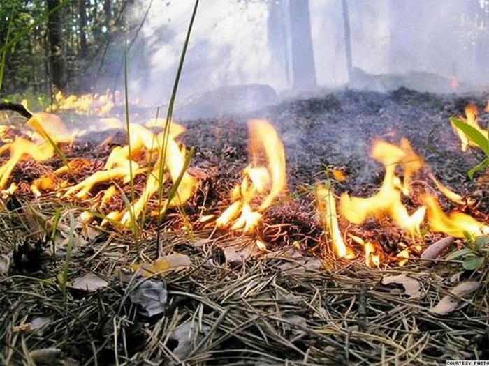Новые правила пожарной безопасности стали более строгими
