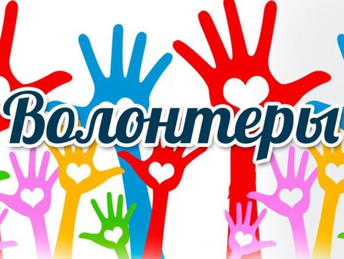Добровольческому движению Ростовской области нужна символика