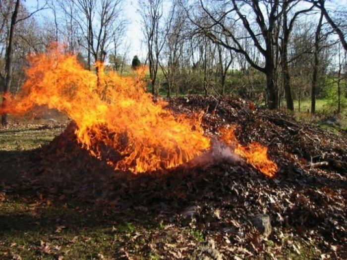 В Донском регионе установлен запрет на сжигание сухой растительности