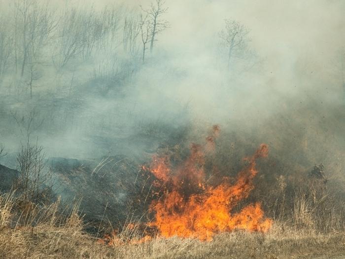 Бороться с пожарами в Шахтах помогут видеокамеры