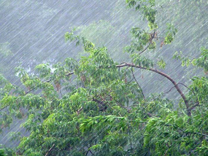 Гидрометцентр грозит грозой и сильным ветром