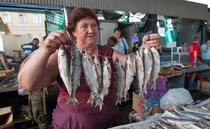 В Ростовской области в Дону для промысла осталась лишь мелкая селёдка