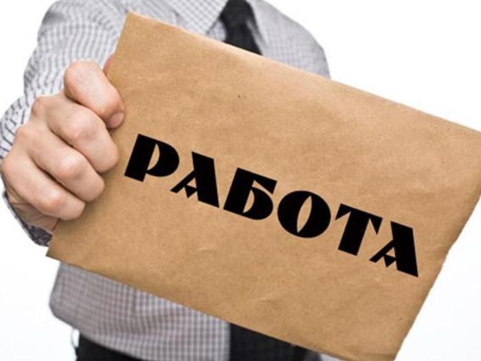 """Евродон"" предложит работу шахтинским мамам"