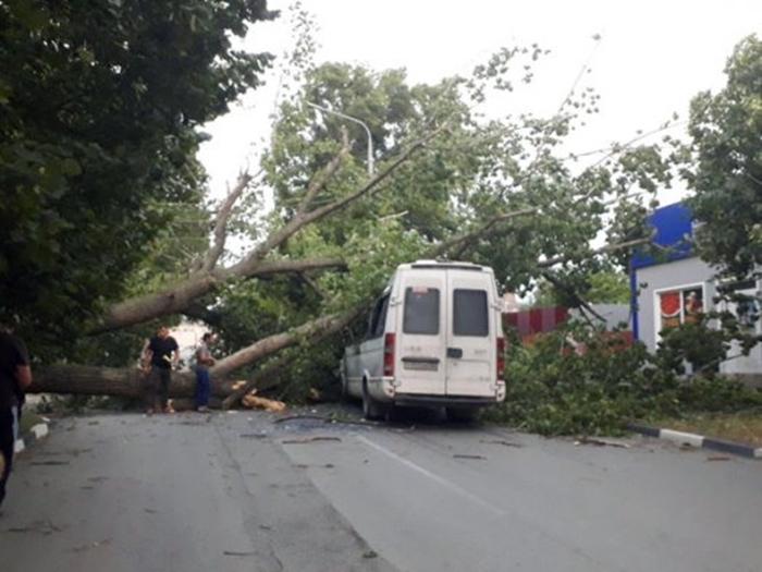 Вчерашний ветер в Шахтах наделал бед