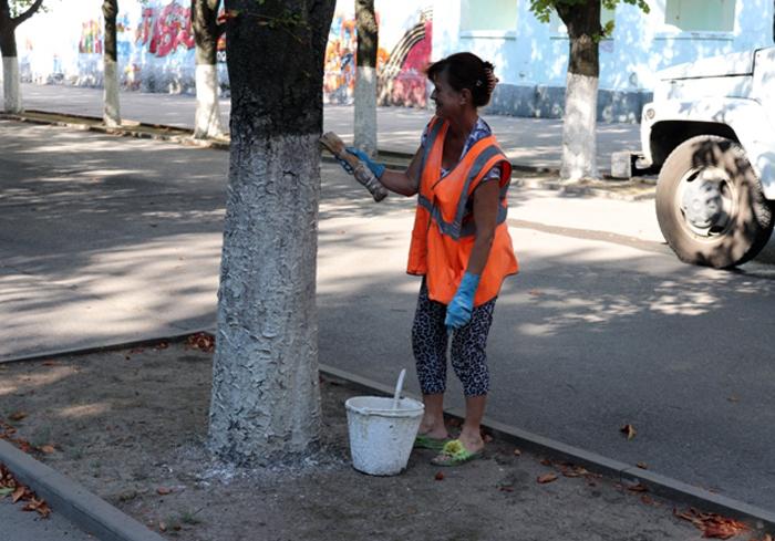 Общегородской день чистоты собрал сотрудников администрации на субботник