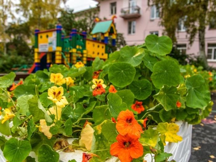 На благоустройство городов и районов области обещают направить более 2,7 миллиарда рублей