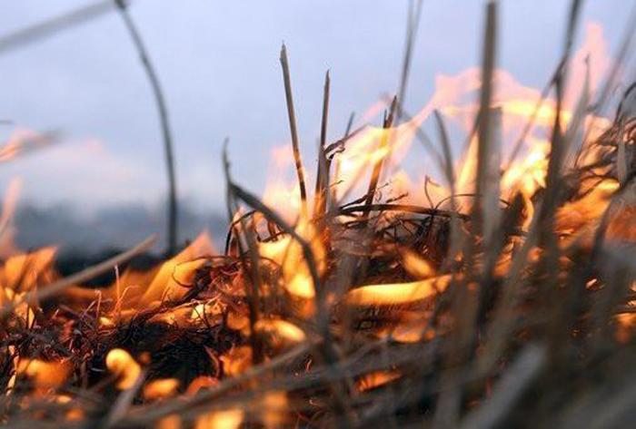 Режим повышенной пожарной опасности будет действовать до 1 октября