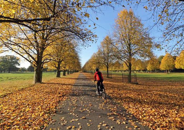 Первая декада ноября окажется сухой, солнечной и относительно теплой