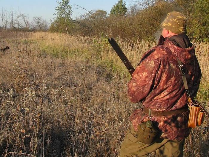 На Дону открывается сезон охоты на зайца-русака и лисицу