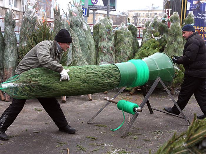 Налетай на елки!