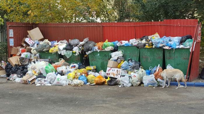 Минприроды объяснило как платить за мусор
